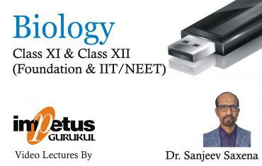 Class XI + Class XII Biology